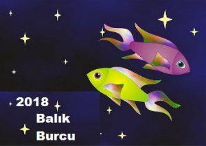 2018 balık burcu yorumu