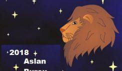 yıllık aslan burcu yorumu
